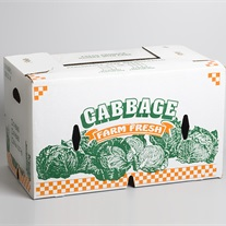 cabbage - cardboard box